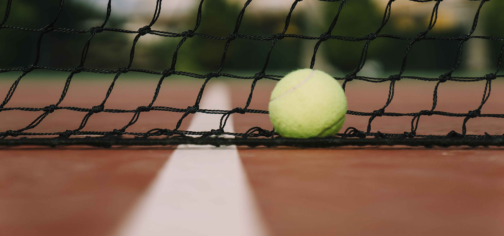 Promoción de disciplinas deportivas
